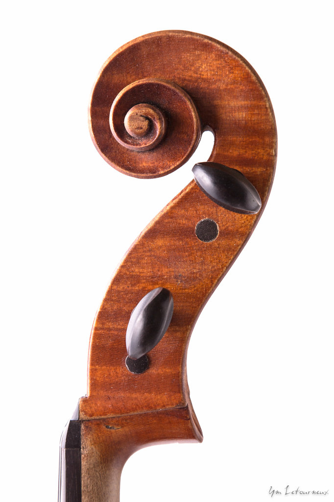 Viola-2009-scroll.jpg